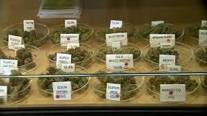 How To Choose The Correct Medical Marijuana Strain