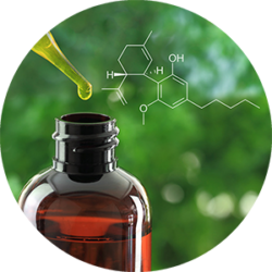CBD Oil   marijuana dispensaries